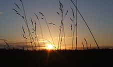 Free Sunset Over Fields In UK Stock Photography - 3093922
