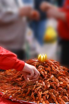 Free Big Tray Of Boiled Crayfishes Stock Image - 3095621