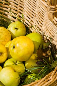 Free Apples In A Basket Stock Photos - 3097363