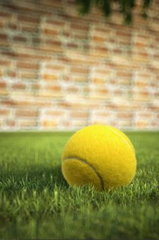 Free Yellow Tennis Ball On Grass, With A Brick Wall In The Background Royalty Free Stock Images - 30902119
