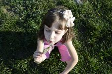 Girl With Dandelion Royalty Free Stock Photography