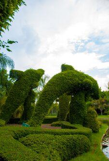 Free Garden Stock Photos - 30909933