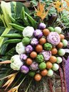 Free Beatiful Vegetable Royalty Free Stock Photography - 30915437