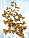 Free Butterflies Royalty Free Stock Images - 30918739