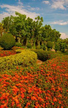 Free Garden Stock Photography - 30910392