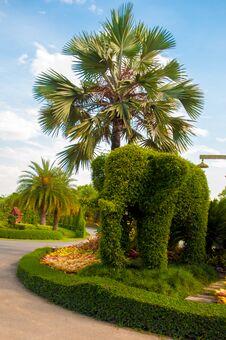 Free Garden Royalty Free Stock Photos - 30910448