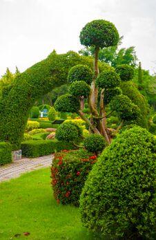Free Garden Stock Photo - 30911270