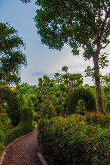 Free Garden Royalty Free Stock Photos - 30911308