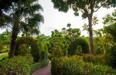 Free Garden Stock Image - 30911311