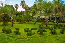 Free Garden Stock Photo - 30911330