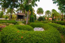 Free Garden Royalty Free Stock Photos - 30911398