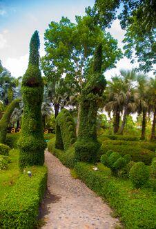 Free Garden Royalty Free Stock Photos - 30911408