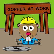 Gopher S Manhole Royalty Free Stock Photos