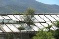 Free Abandoned Greenhouse Stock Images - 30930904