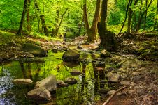Free Mountain Stream In The Old Forest Stock Photos - 30934333