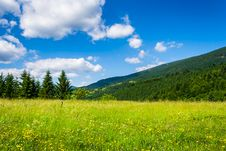 Free Meadow With In The Mountains Stock Photo - 30934590