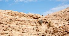 Free Hiking In Judean Desert Royalty Free Stock Image - 30935726