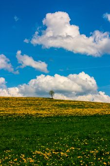 Free Colorful Landscape Royalty Free Stock Photos - 30937308