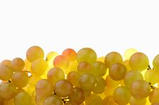 Free Fresh Green Grapes On A White Background Royalty Free Stock Image - 30946186