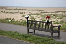 Empty Bench With Flowers On Kent Coast Royalty Free Stock Photos