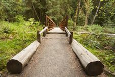 Free Wide Angle Of Nature Bridge End Near Marymere Falls, Olympic National Park Royalty Free Stock Image - 30952206