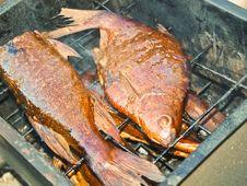 Free Homemade Smoked Fish Stock Photo - 30956260