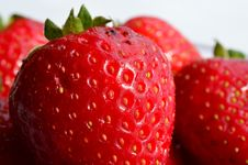 Free Strawberries Royalty Free Stock Photography - 30957577