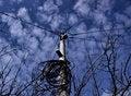 Free Telecommunication Pole Royalty Free Stock Images - 30977859