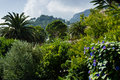 Free Capri, Italy Royalty Free Stock Photos - 30979858