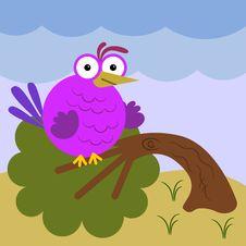 Free Heavy Bird Stock Photo - 30975570