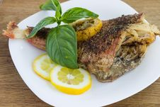 Free Baked Grouper Served With Lemon And Basil Royalty Free Stock Photography - 30979147