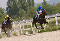 Free Horse Racing In Pyatigorsk. Royalty Free Stock Photo - 30986255