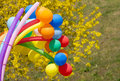 Free Colorful Balls Stock Photo - 30986840