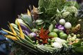 Free Beautiful Vegetables Royalty Free Stock Image - 30988206