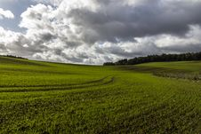 Free Green Field With Vibrant Lines An Dramatic Sky Stock Images - 30983284