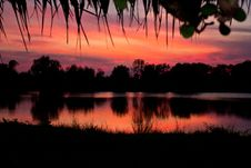 Free Trees Silhouette On Sunset Thailand4 Stock Image - 30986601