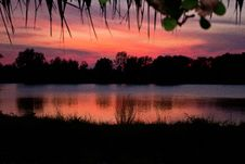 Free Trees Silhouette On Sunset Thailand8 Stock Image - 30987061