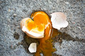 Free Broken Egg Royalty Free Stock Photos - 30991688