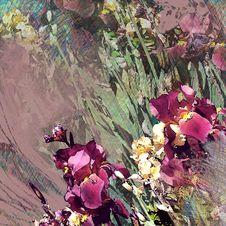 Free Floral Design Stock Image - 30999491