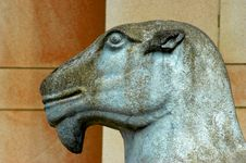 Free Statue Of Camel Stock Image - 312331