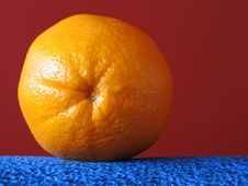Free Orange Stock Photography - 315942