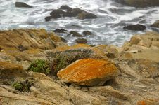 Free California Coast3 Stock Photography - 316522