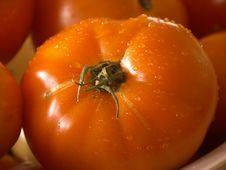 Free Wet Tomatoe Royalty Free Stock Images - 318899