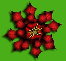 Free Poinsettia Stock Photos - 319893