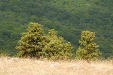 Free Mountain Stock Image - 3100301
