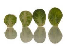 Free Brussel Sprouts Royalty Free Stock Image - 3101136