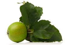 Free Green Apple Royalty Free Stock Image - 3101166