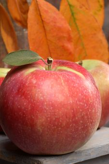 Free Red Apple Royalty Free Stock Image - 3101866