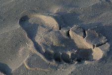 Free Footprint In The Sand Royalty Free Stock Photos - 3102618