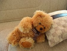 Free Teaddy Bear Resting On Cushion Stock Image - 3104031